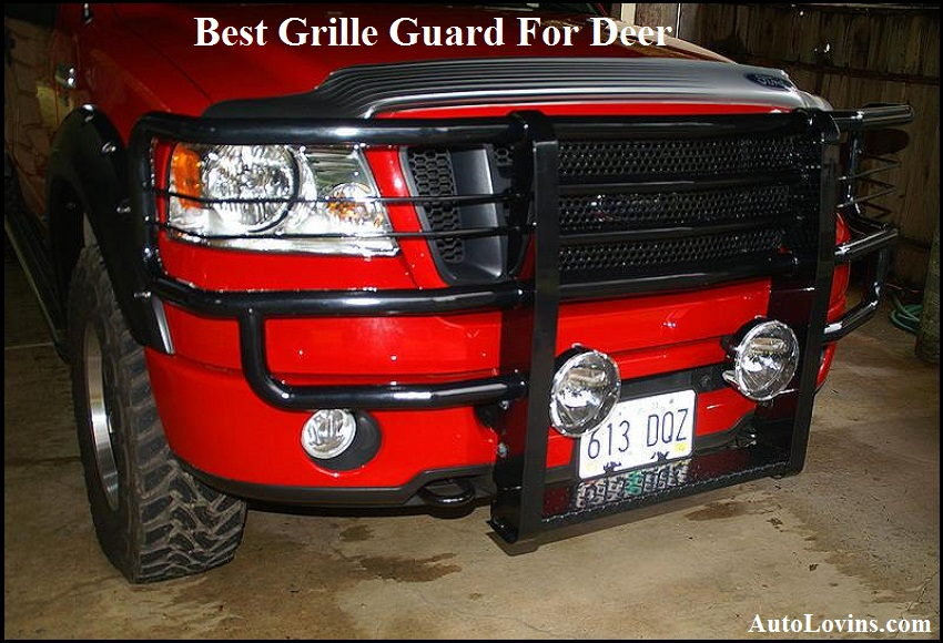 Best Grille Guard For Deer